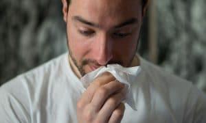 allergy statistics