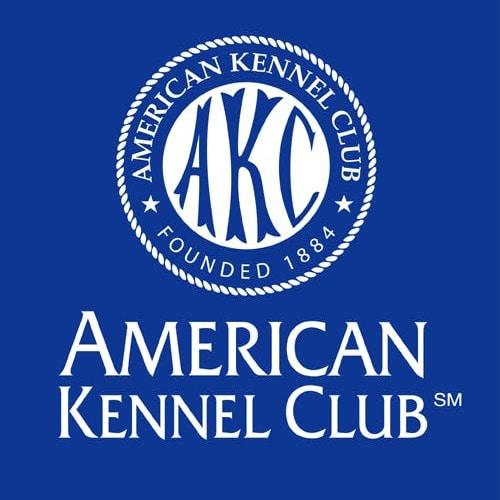 AKC Dog Insurance Review