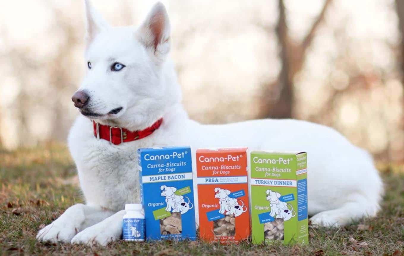 Canna-Pet Reviews - Featured Image