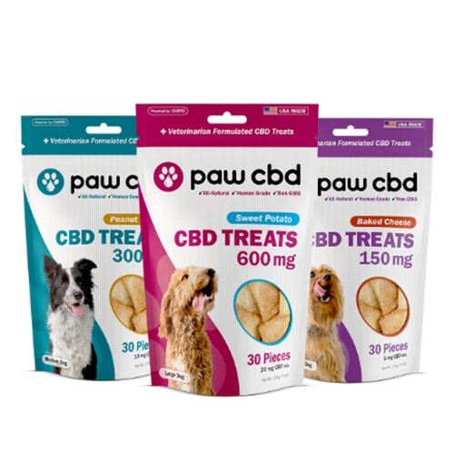 cbdMD Hard Chews For Dogs - Review