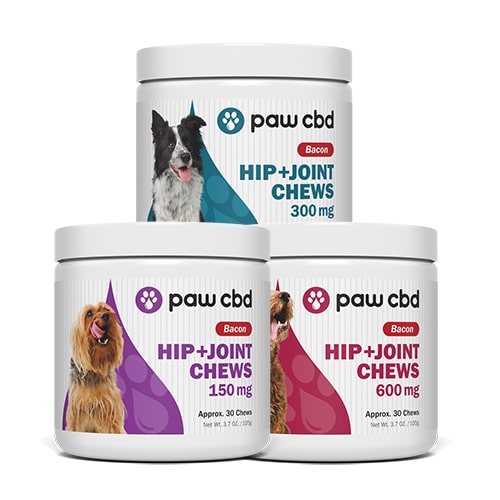 cbdMD Hip and Joint Chews for Dogs - Review