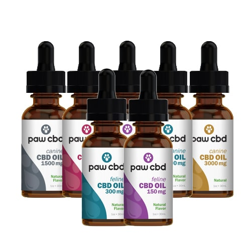 cbdMD Paw CBD Oil Tinctures for Pets - Review