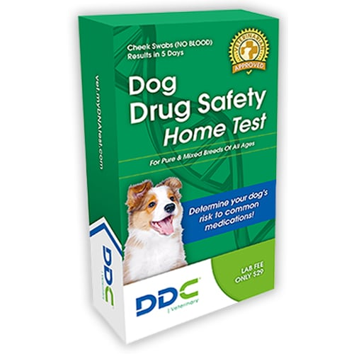 DDC DNA Testing for Dogs and Other Animals Review
