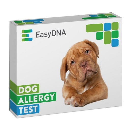 Easy DNA Testing Kits Review