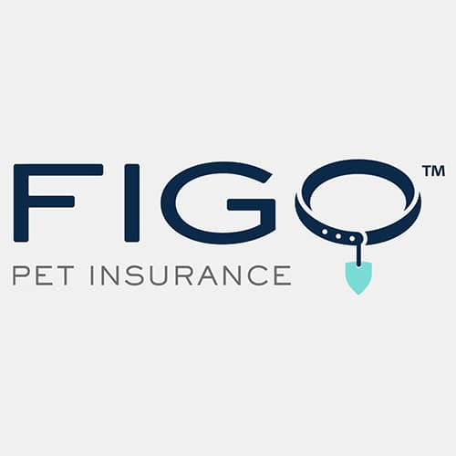 Figo Cat Insurance Review - Logo