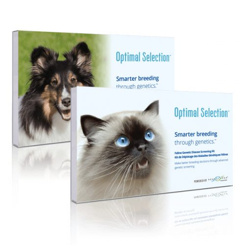 Optimal Selection Canine and Feline Test Kit Review