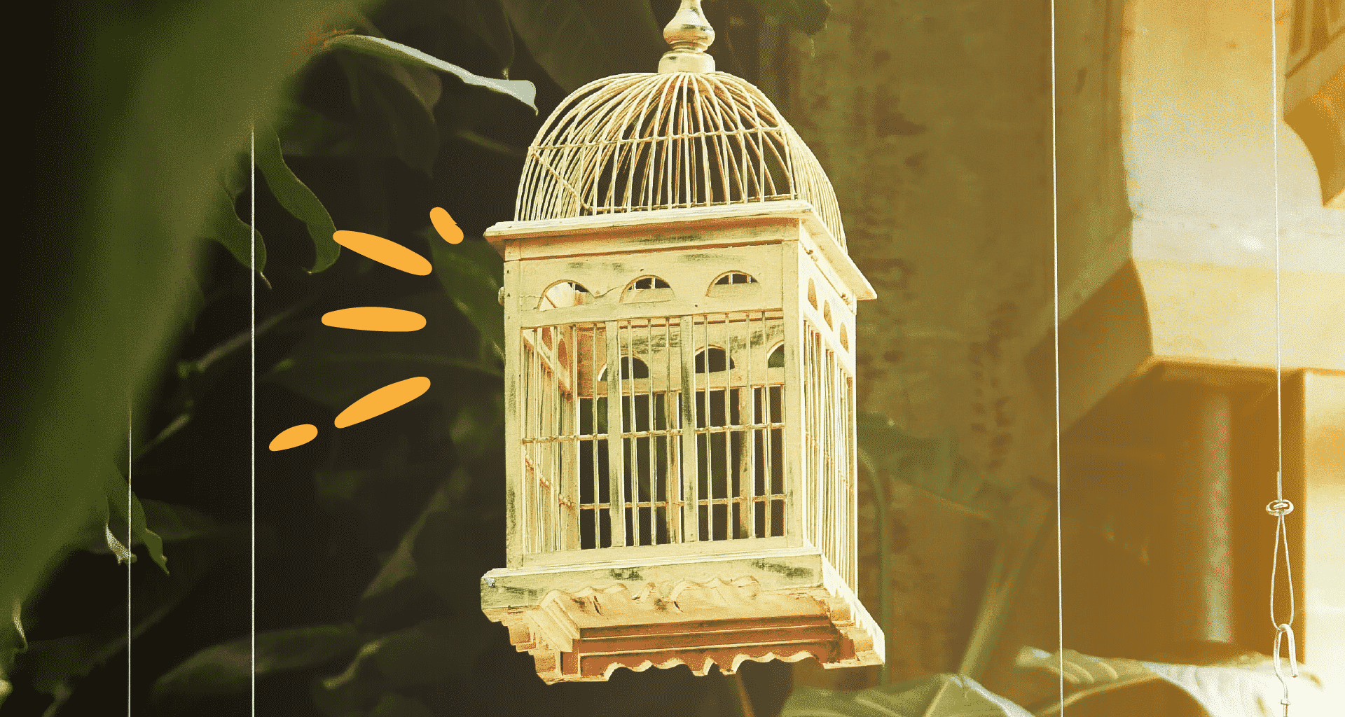 Best Bird Cages - Featured Image