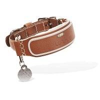 Best GPS Dog Collars - Link AKC Smart Dog Collar Review