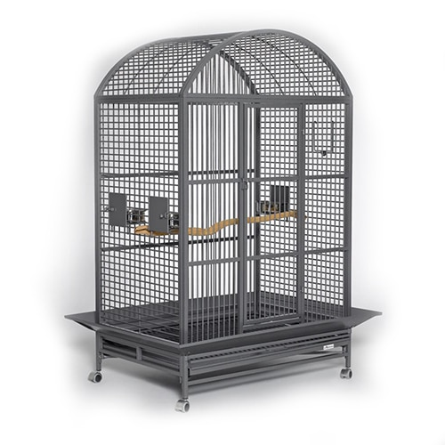 MidWest Homes Avian Adventures Grande Dometop Bird Cage Review