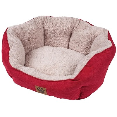 Best Cat Beds - Petmate SnooZZy Clamshell Round Cat Bed Review