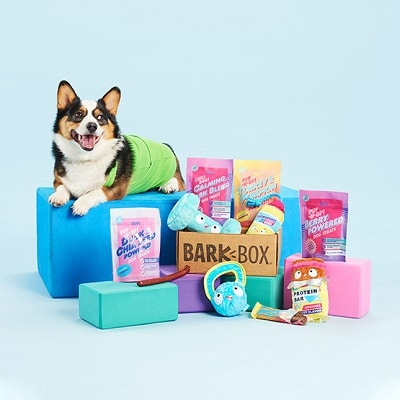 Best Gifts for Dog Owners - BarkBox Subscription Review