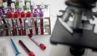 Russia Registers First Covid-19 Vaccine for Animals