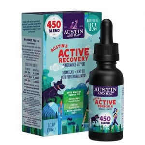 Austin's Active Recovery Review