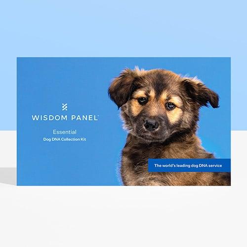 Wisdom Panel Essential - Review
