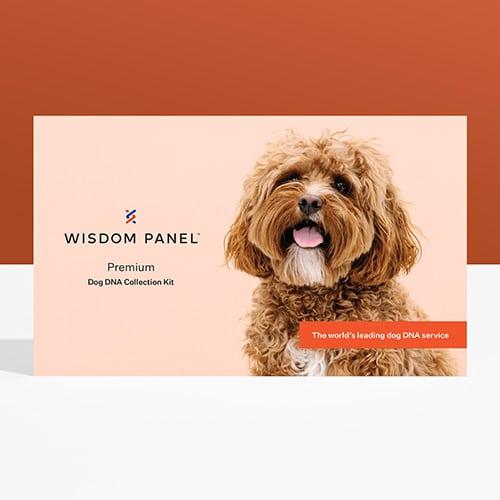Wisdom Panel Premium - Review