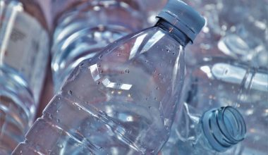 Scientists Create Vanilla Flavoring From Plastic Bottles