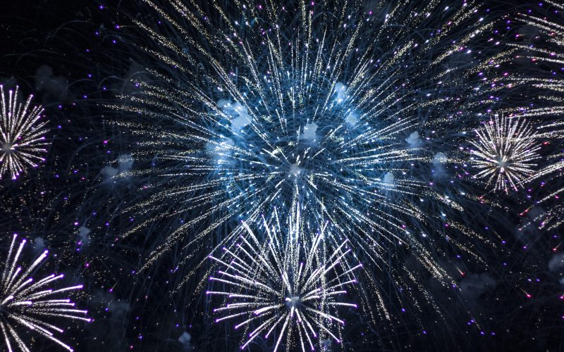Dogs and Fireworks - Featured Image