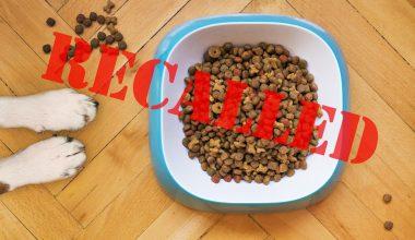 Tuffy's Pet Foods Recalls Their Salmon Entrée Dog Food